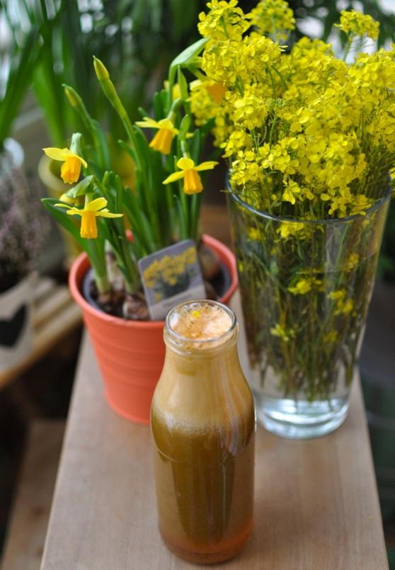 spring juice1