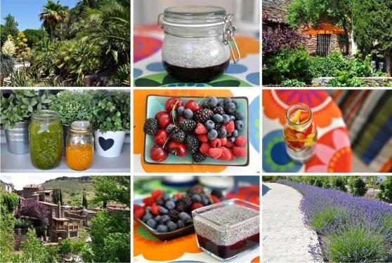 summer foods2